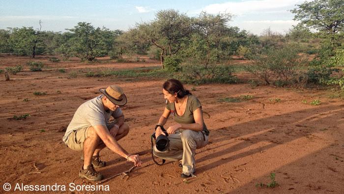 Bush Walk - Limpopo-Lipadi Private Game Reserve, Botswana