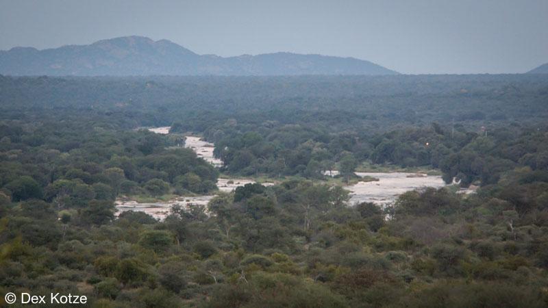 Bushveld - Limpopo-Lipadi Private Game Reserve, Botswana